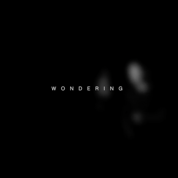 WONDERING – Casey&Tomek